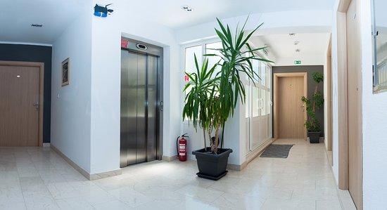Milna, Croacia: Elevator / Lift