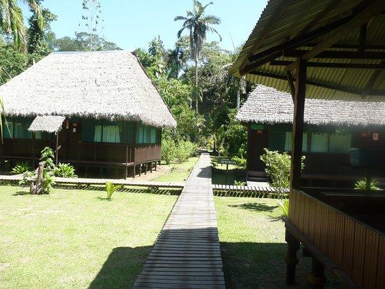 Cayman Lodge Amazonia