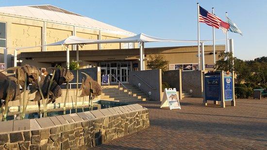 North Carolina Aquarium at Fort Fisher: Aquarium at Fort Fisher