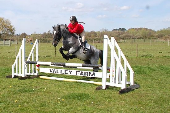 Valley Farm Equestrian Leisure