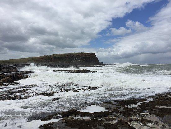 Southland Region, New Zealand: Costa nel tratto della foresta fossile