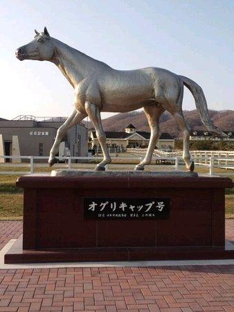 Niikappu-cho Photo