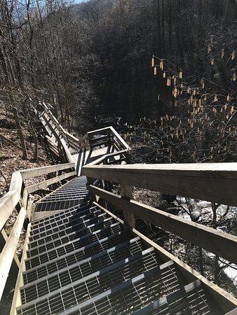 Amicalola Falls State Park: photo1.jpg