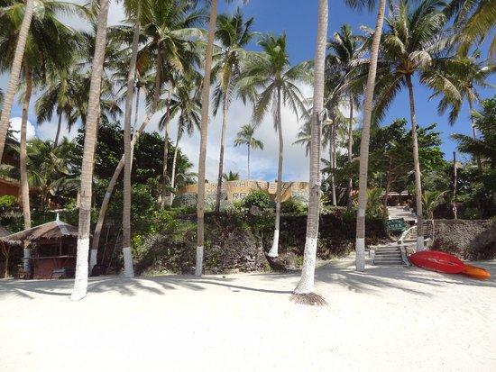 Anda White Beach Resort Picture