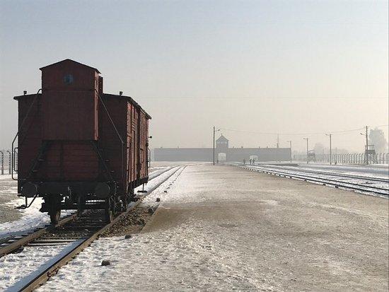 Risultati immagini per vagone aperto auschwitz