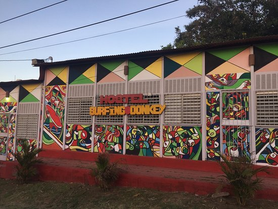 Hostel Surfing Donkey: photo4.jpg