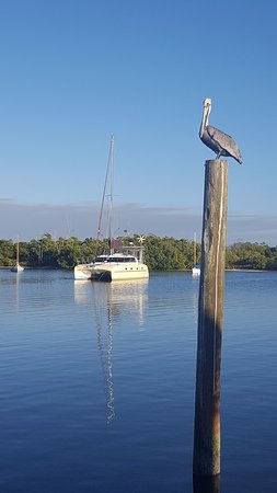 Gulf Island Tours: View while out on the Reel Keel