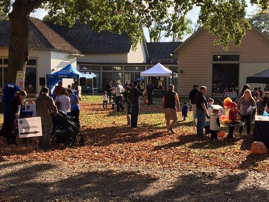 Fairfield, CT: Halloween on the Green