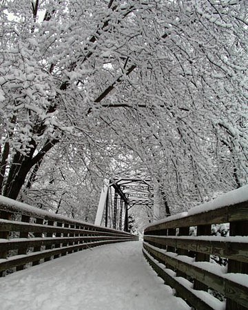 Snow covered Trestle in Damascus