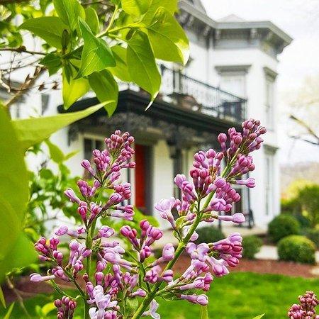 Milton, KY: Spring time