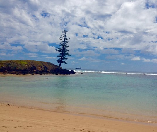 Australia South Pacific: UPDATED 2017 Prices, Reviews & Photos (Norfolk