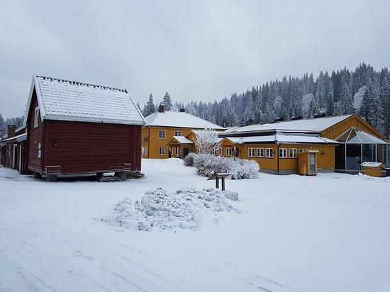 Krokkleiva, Norge: 20170131_134050_large.jpg