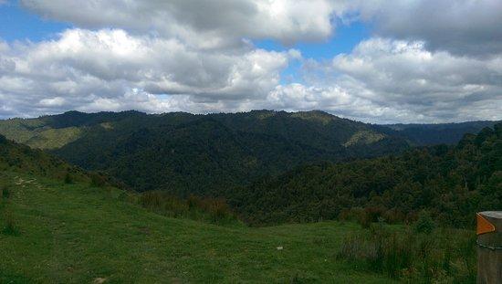 Owhango, New Zealand: IMAG2177_large.jpg