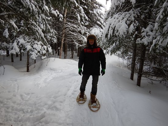 Saint-Romain, Canada: En hiver vous avez acces a 17 km. de raquettes a proximité du site.