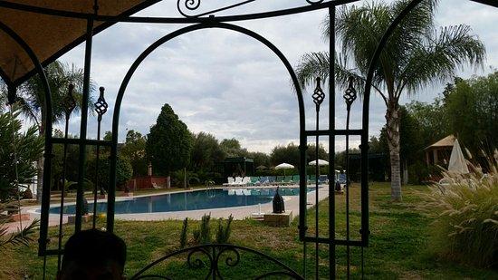 Las Palmeras Photo
