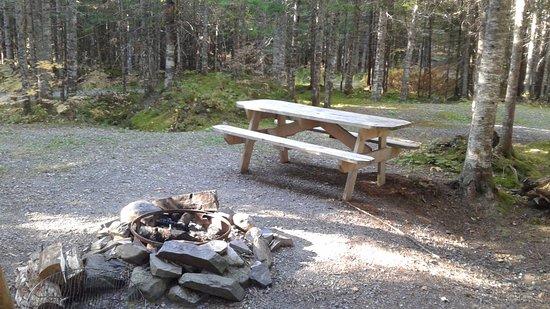 Saint-Romain, Канада: Air de feu de camp a tout les tipis.Du bois en vente sur place.