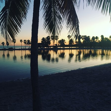 Matheson Hammock Park: The view at night