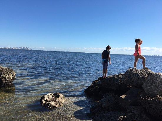 Matheson Hammock Park: Exploring on the rocks