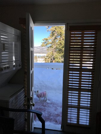 Big Bear Lake, CA: View from the kitchen to the deck