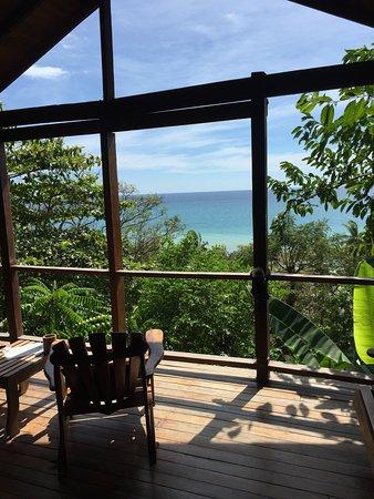 Lookout Inn Lodge: Monkey House view