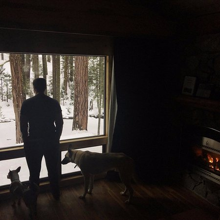 Pinecrest, Kaliforniya: Enjoying the toasty cabin but also soaking in the view