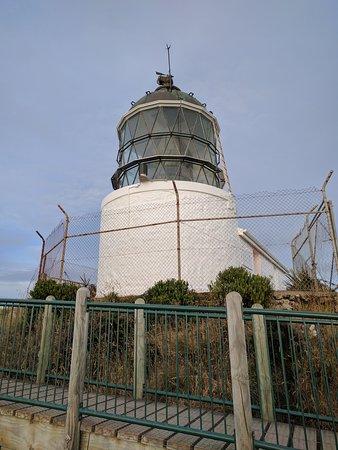 Balclutha, نيوزيلندا: Nugget Point Leuchtturm