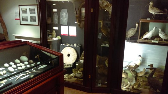 West Highland Museum : IMAG0048_large.jpg