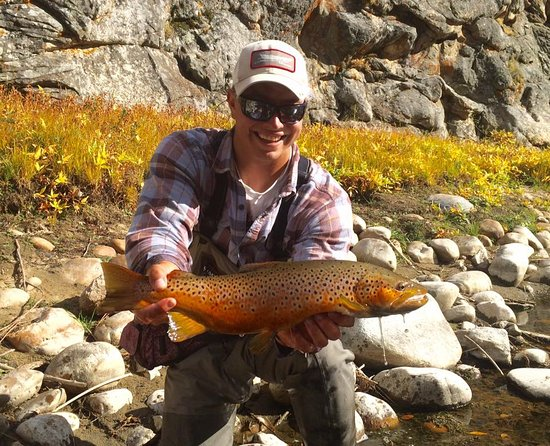 Saratoga, WY: Guide Thomas Koenig with a beautiful brown trout