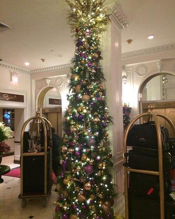 워릭 뉴욕 호텔 이미지