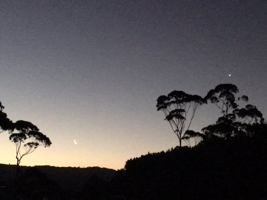 Whitianga Campground : Twinkle twinkle little star!