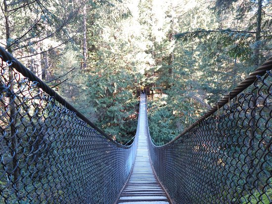 Kuzey Vancouver, Kanada: Lynn Canyon Suspension Bridge