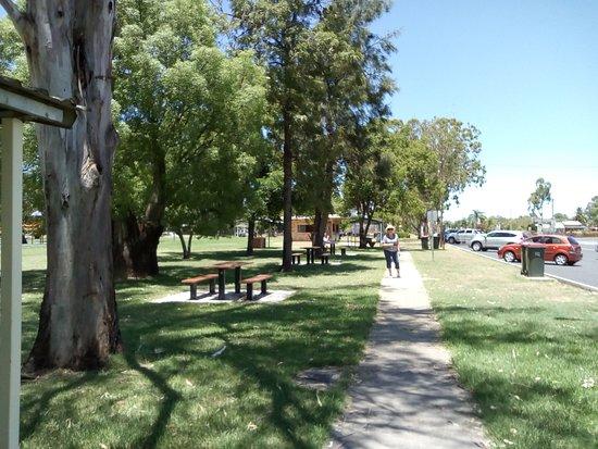 Apex-Lions Park