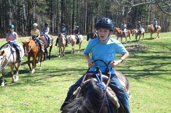 Horseback Riding Adventure on the...