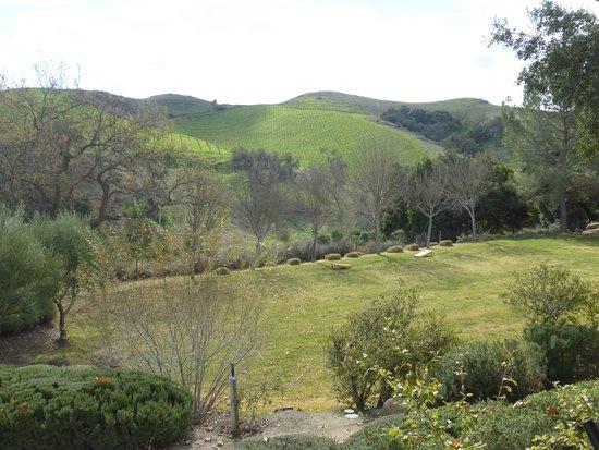 Los Olivos, Californië: Room to roam