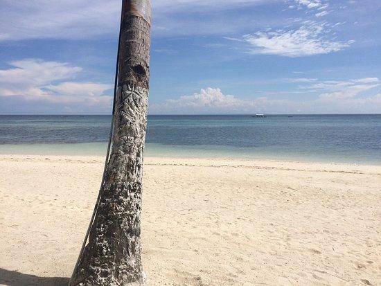 Anda White Beach Resort: photo2.jpg