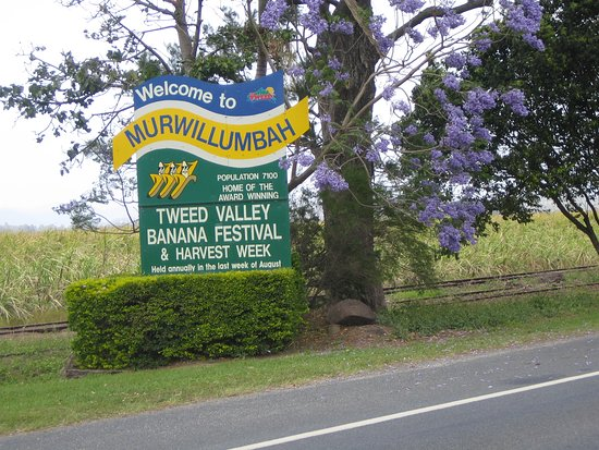 Welcome to Murwillumbah