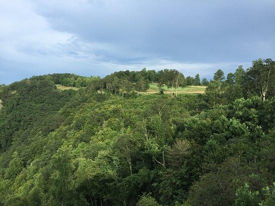 Meadows of Dan, VA: Primland