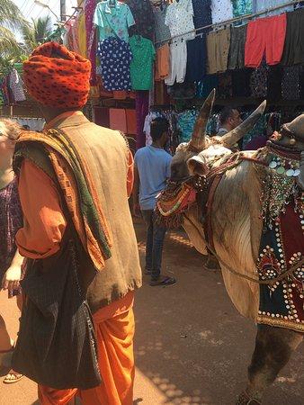 Anjuna, Hindistan: photo0.jpg