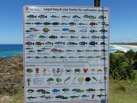 Hastings Point, Australien: The law of the land
