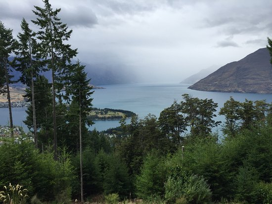 Ziptrek Ecotours: View from line 6