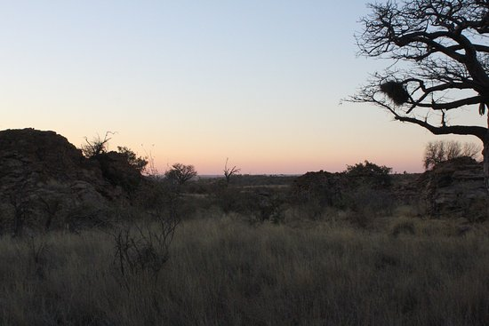 Mapungubwe National Park Foto