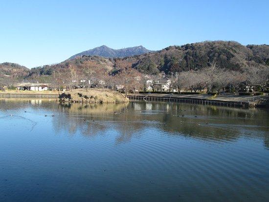 Hojo Oike Pond