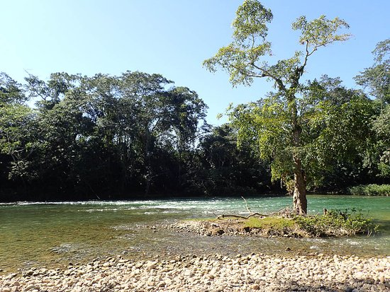 Clarissa Falls Resort: Mopan River near CF