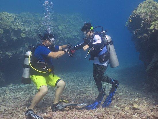 Diving Bell Scuba
