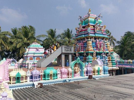 Antarvedi, India: IMAG6651_large.jpg
