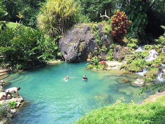 Black Rock Lodge: Wildside Hike destination: natural spring fed pool