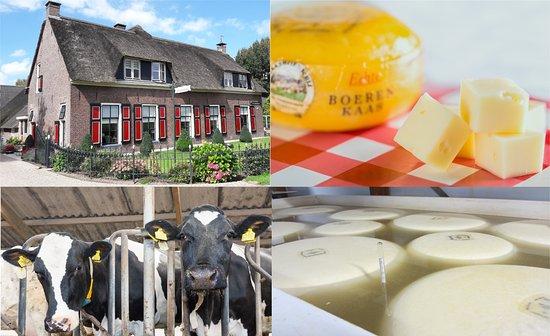 Werkhoven, Países Baixos: Kaasboerderij De Ossenwaaard