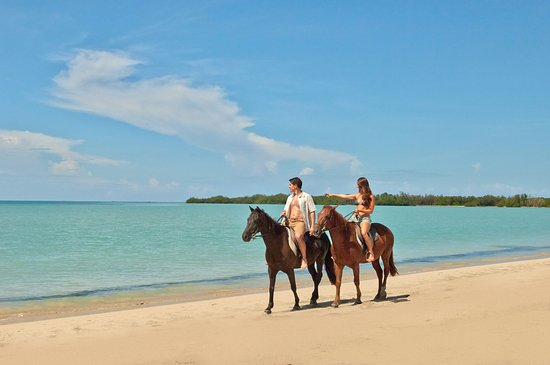 Bluefields, Jamaica: Horseback Riding