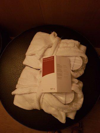 写真オーストリア トレンドホテル パークロイヤルパレス枚