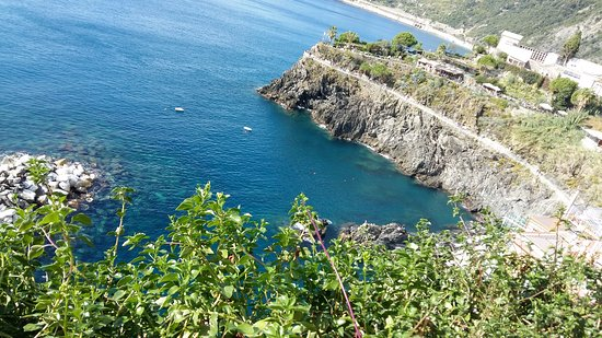 Cinque Terre Walk and Drink: 20161010_144914_large.jpg